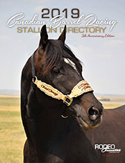 99 - 2019 Stal Directory Cover